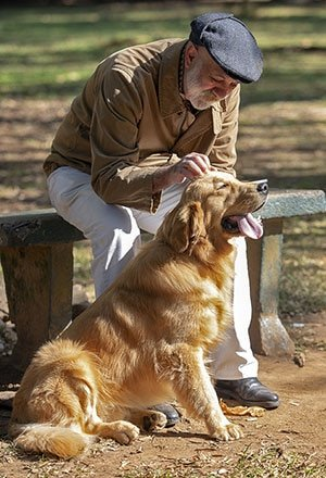 Old man sitting with a Golden Retriever